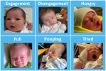 photos depicting newborn cues